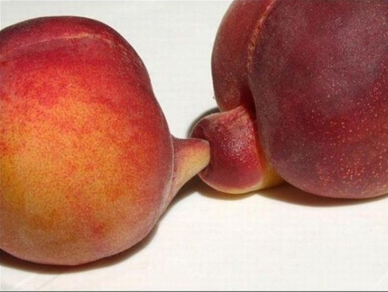 Sex with fruits