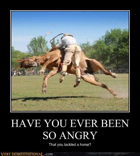 Tackle a horse
