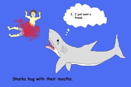 Shark fun fact