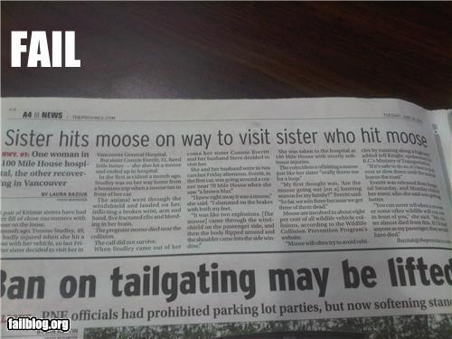 Sister hits moose
