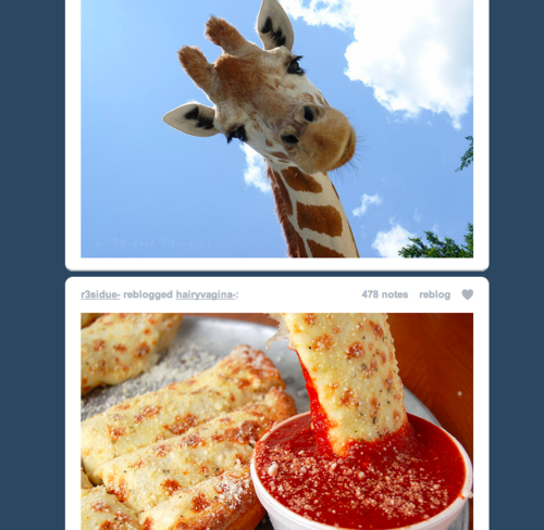Giraffe dipping sauce