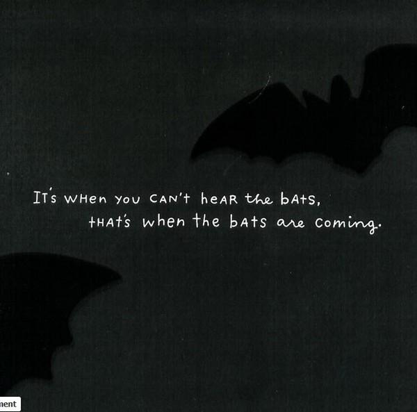 Cant hear the bats