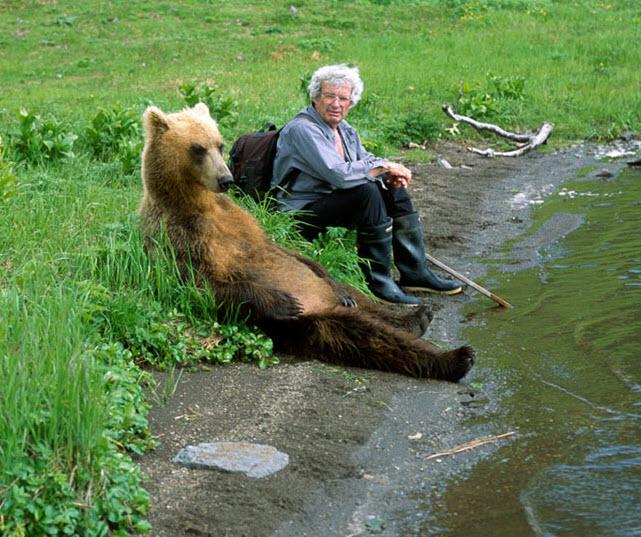 Relaxante urso