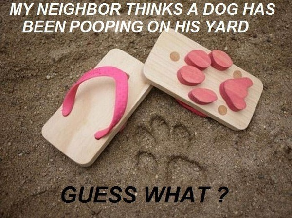 My neighbor thinks