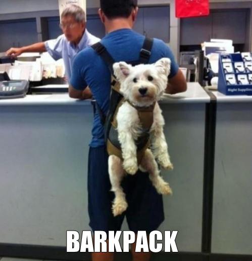 Barkpack