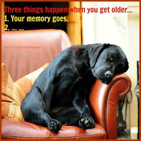 3 things happen when you get older