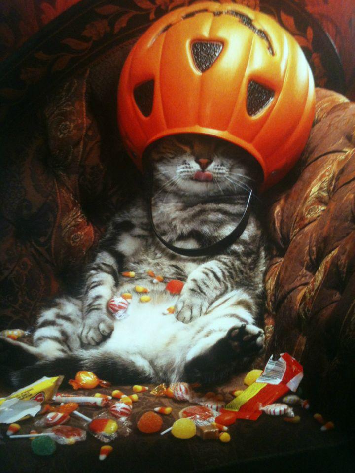 Halloween idea4