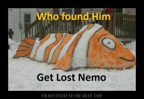 Get lost nemo