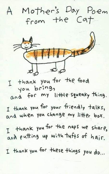 Mothers day poem from cat