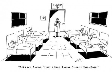 Meanwhile in a hospital ward