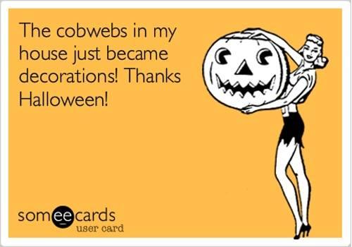 Cobwebs became halloween decorations