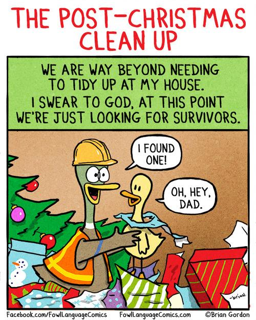 Post-christmas clean up