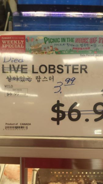 Died lobster