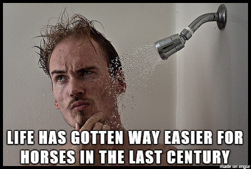 Shower thoughts5