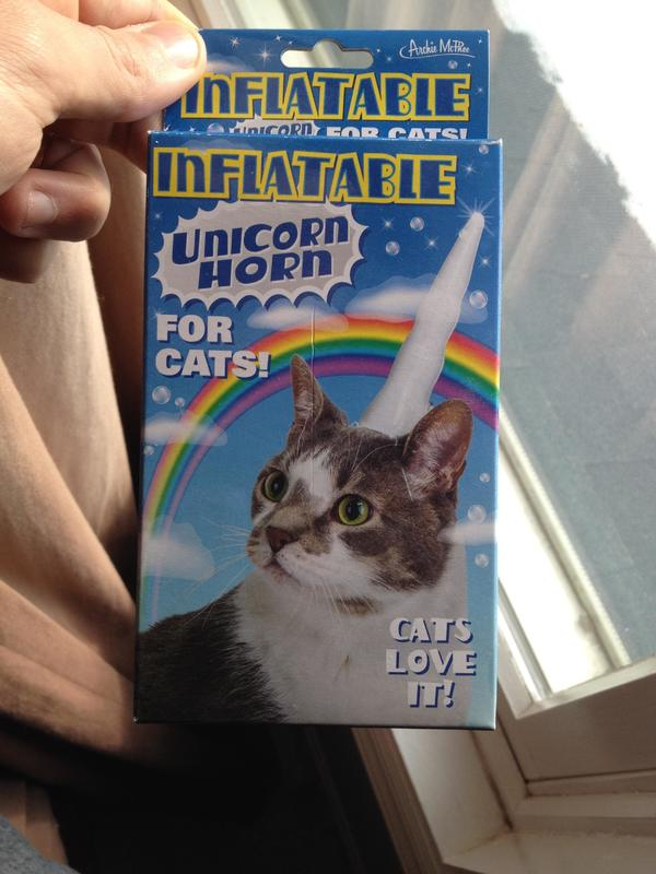 Cats love it