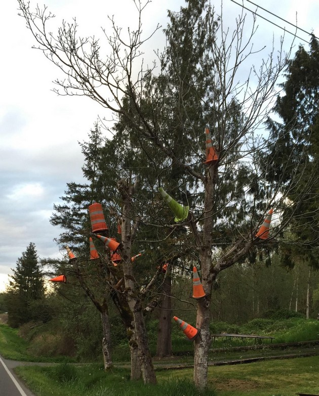 Safety cone tree
