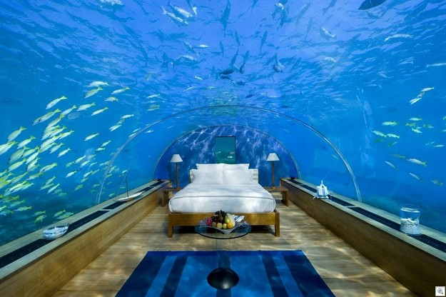 Sleeping with the fishes2