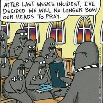 Walrus prayer