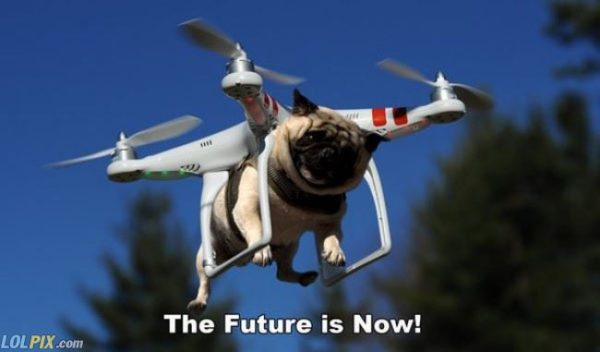 doggy-drone